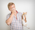 Allergic to animals man holding a cat is Stock Photography