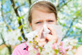 Allergy. Little girl is blowing her nose near spring tree in bloom - sneezing girl. Child with a handkerchief Royalty Free Stock Photo