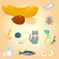 Allergy symbols disease healthcare food viruses health flat illness allergen symptoms disease information vector