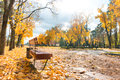 Alley in the autumn city park Royalty Free Stock Photo