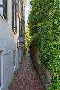 Alley with brick pavers a narrow alleyway between a building and a vine covered wall paved bricks Royalty Free Stock Photos