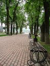 Alley of the city Park in the Russian city of Kaluga. Royalty Free Stock Photo