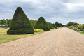 Alley in Hampton Court gardens Royalty Free Stock Photo