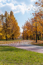 Alley in a park autumn sosnowiec poland Royalty Free Stock Images