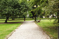 Alley in a park with bench and streetlight italy Royalty Free Stock Photos