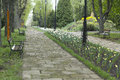 Alley in the park daytime with flowers and wooden benches along road Stock Photography