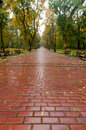 Alleyway with paved road to autumn park Stock Photo