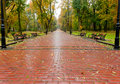 Alleyway with paved road to autumn park Royalty Free Stock Images