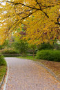 Alleyway with paved road to autumn park Royalty Free Stock Photos