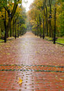 Alleyway with paved road to autumn park Royalty Free Stock Photography