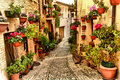 Alleyway. Spello. Umbria. Royalty Free Stock Photo