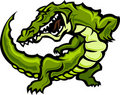 Alligator / Gator Mascot Vector Illustration Stock Photography