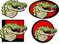 Alligator Mascot Logo Royalty Free Stock Image