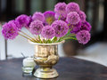 Allium flowers bouquet in a stylish decorative vase Royalty Free Stock Photo
