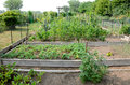 Allotment Gardens Royalty Free Stock Photos