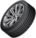 Alloy wheel with low-profile tire Royalty Free Stock Photo