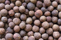 Allspice background isolated close up Stock Images