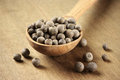 Allspice in spoon peppercorns wooden on wooden background Stock Image
