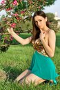 Alluring brunette sitting on the grass and touching a branch of flowering tree Stock Photos