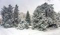 Almaty City.