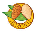 Almond with leaves label nut symbol sign Royalty Free Stock Photography