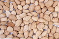 Almond nuts in close up image Royalty Free Stock Photo