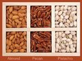 Almond, pecan, and pistachio Royalty Free Stock Photo