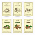 Almond, pistachio, filbert Royalty Free Stock Photo