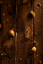 Almond shells scattered on wood Royalty Free Stock Photos