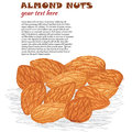 Almonds Royalty Free Stock Photo