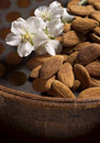 Almonds and flower Royalty Free Stock Photography