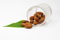 Almonds in a glass on green leaf Royalty Free Stock Photos