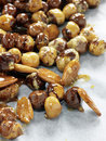 Almonds and hazelnuts coated in caramel for pralin Royalty Free Stock Photography