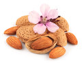 Almonds with leaves Stock Photo