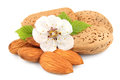 Almonds nuts with flowers of nuts Royalty Free Stock Photo