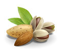 Almonds and pistachios composition detailed vector illustration for best prints other uses Royalty Free Stock Images