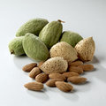 Almonds with and without shells Royalty Free Stock Image