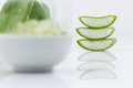 Aloe vera fresh leaf water can help neutralize free radicals co contributes to aging and strengthen the immune system as well Stock Photo