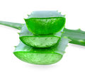 Aloe vera isolated on white background Royalty Free Stock Photos