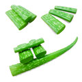 Aloe vera leaves white background Stock Images