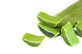 Aloe vera slices isolated on white Royalty Free Stock Photo