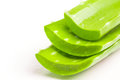 Aloe vera stack Royalty Free Stock Photo