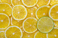 Alone lime amid lemons sour Stock Images