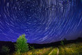Alone tree on night sky with stars, startrails and country road Royalty Free Stock Photo