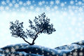 Alone tree and snowflake Stock Photography