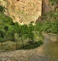 Along The Virgin River, Zion Royalty Free Stock Photo