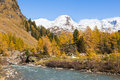 Alp river rapid in autumn landscape Stock Image