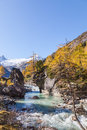 Alp river rapid in landscape Royalty Free Stock Photography