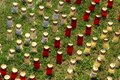 Candles during Alpe d`Huzes, a life changing experience, France Royalty Free Stock Photo