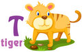 Alphabet animal T Image libre de droits